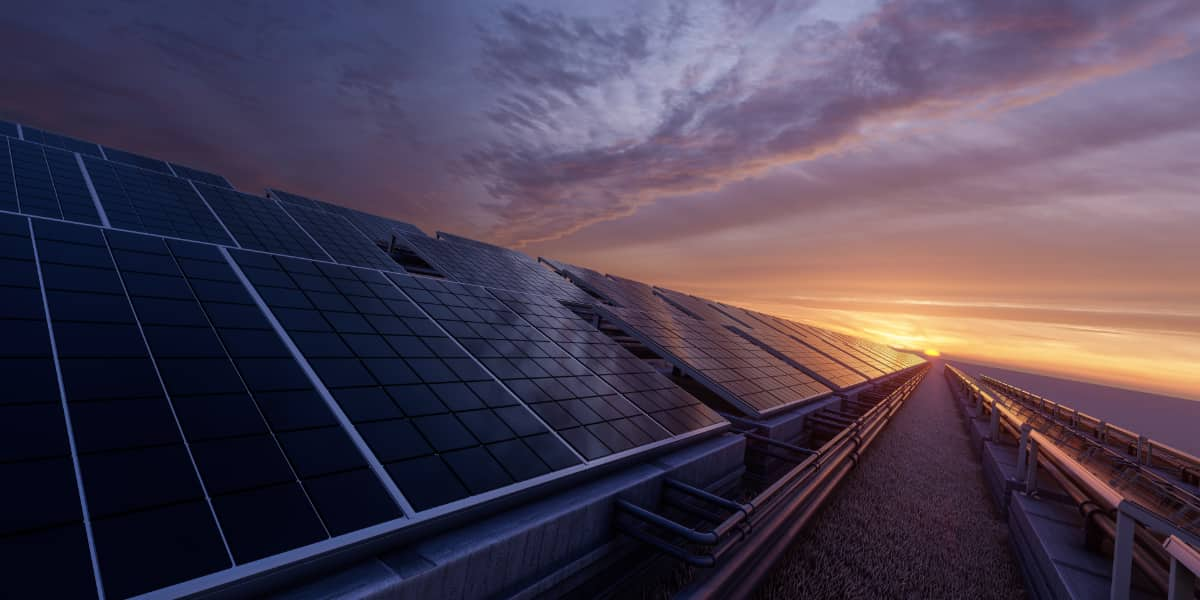 A large grid of solar panels at sunset